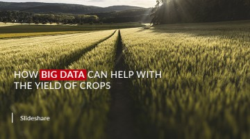 How Big Data can Help with the Yield of Crops